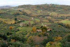 The mosaic landscape