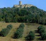 San Vito di Narni's Castle