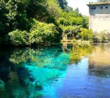 the stunning blue of Stifone's waters