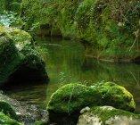 Il fiume Farfa