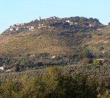 La collina dove sorge Fara