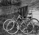 Con i pedali al fianco del fiume