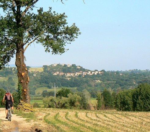 In bici sulla piana del Tevere presso Ocriculum